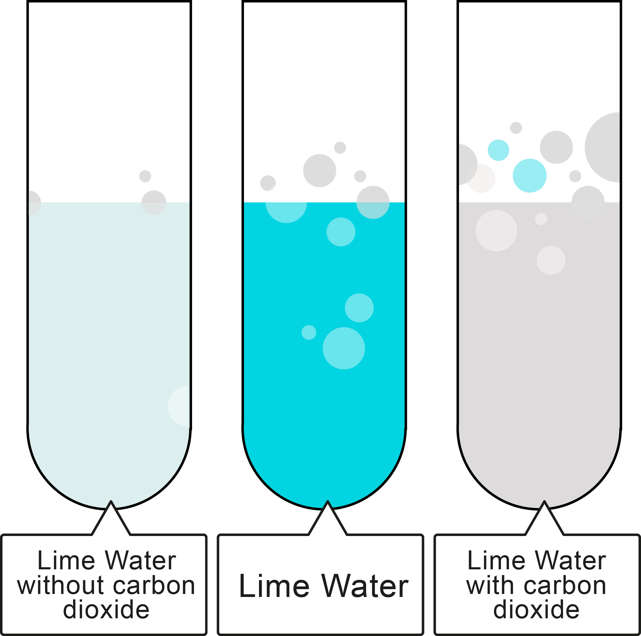 Acids and Metal Carbonates Worksheet - EdPlace