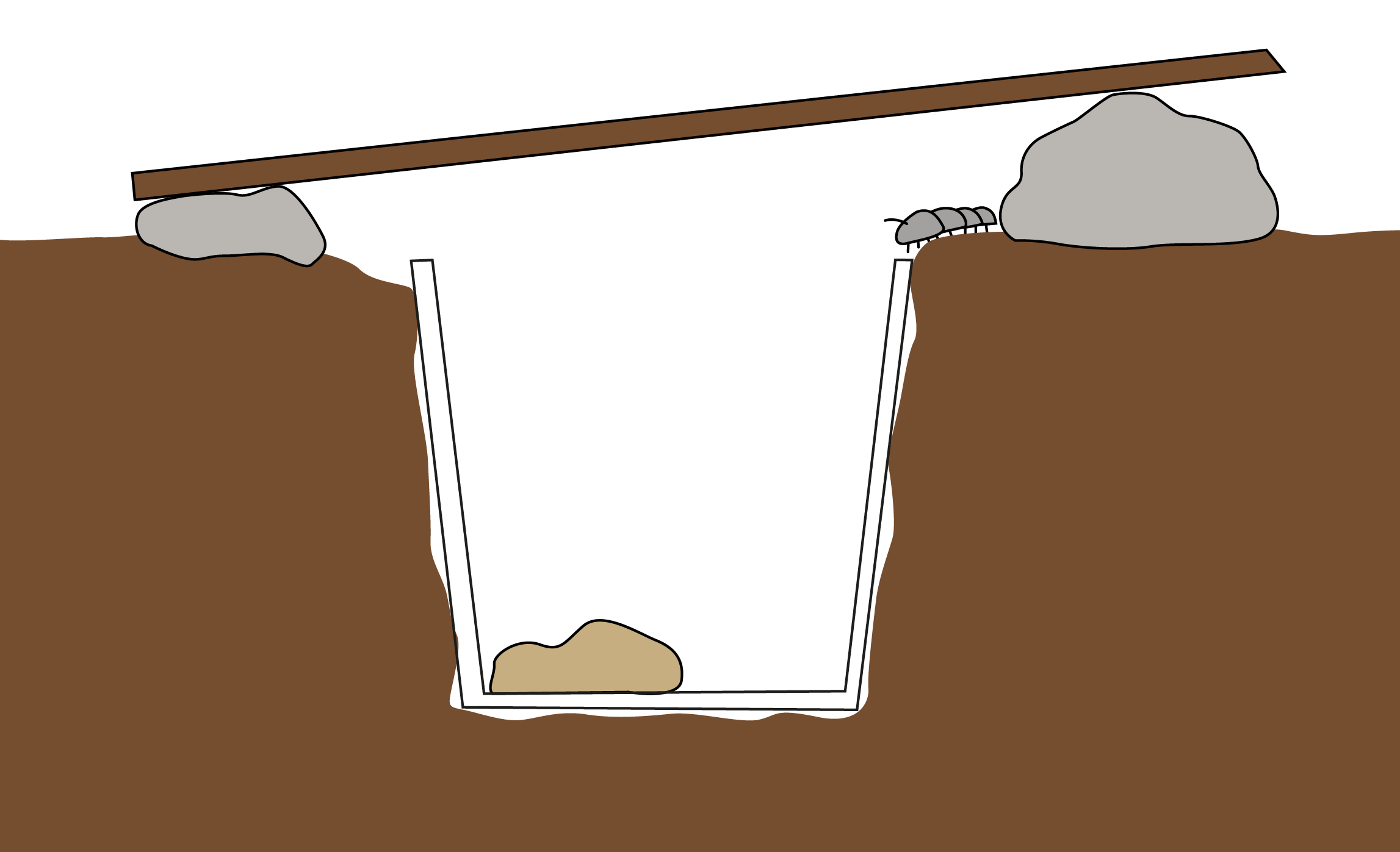 Image of a pitfall trap