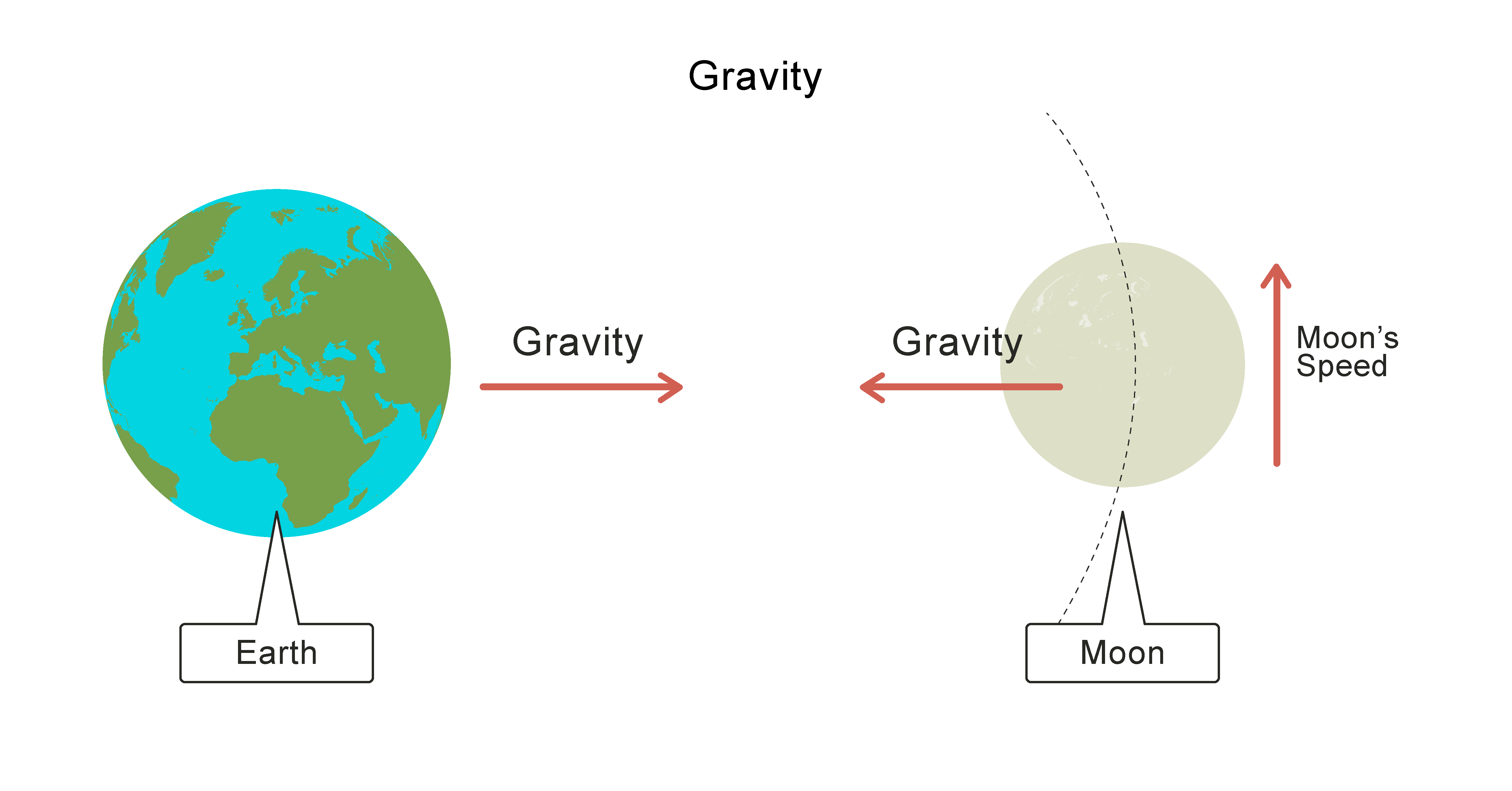 Earth and moon gravity