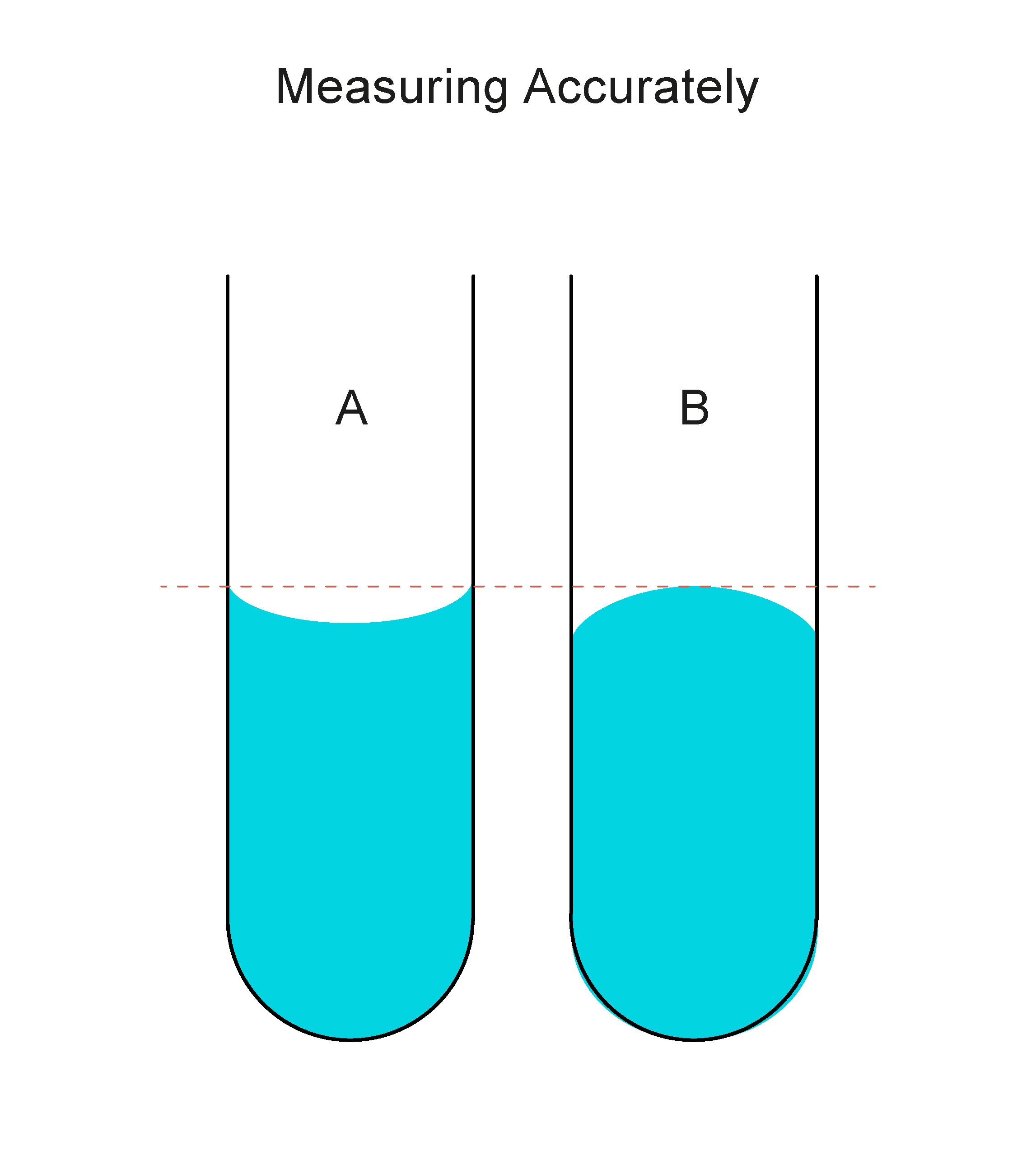 Measuring Accurately Worksheet - EdPlace