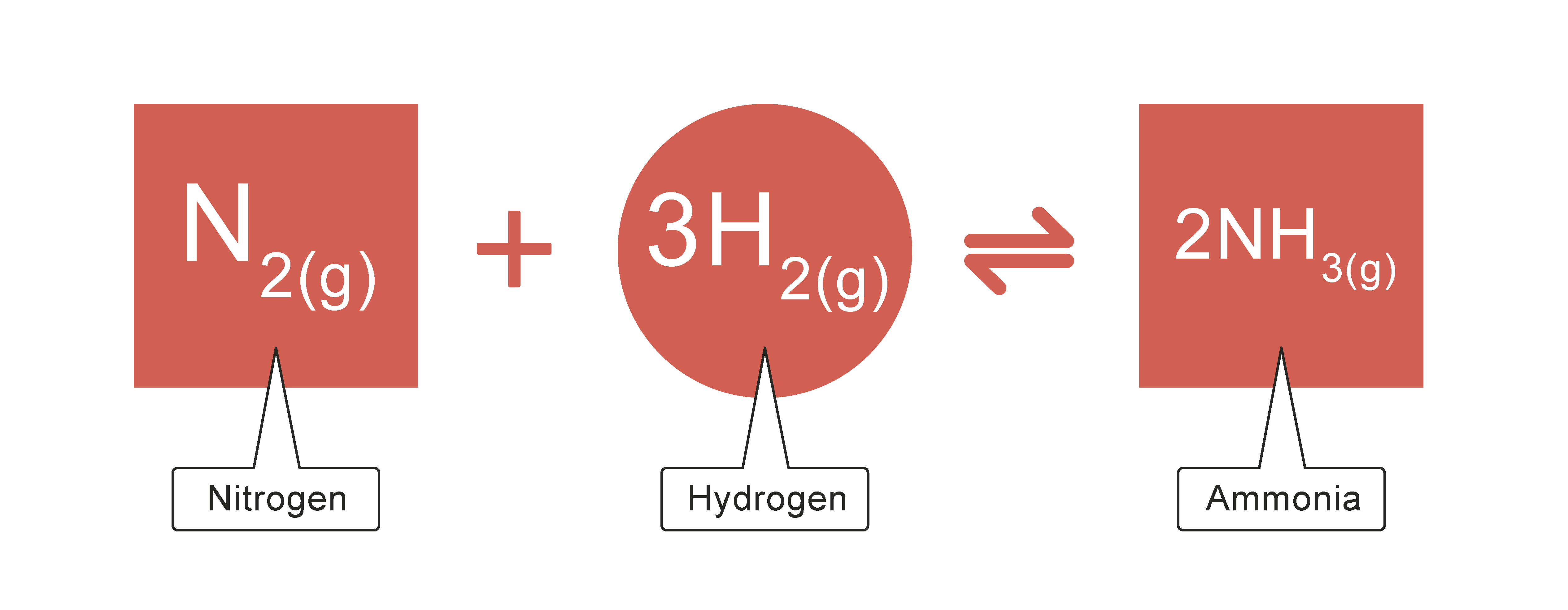... and Endothermic Reactions and the Haber Process Worksheet - EdPlace