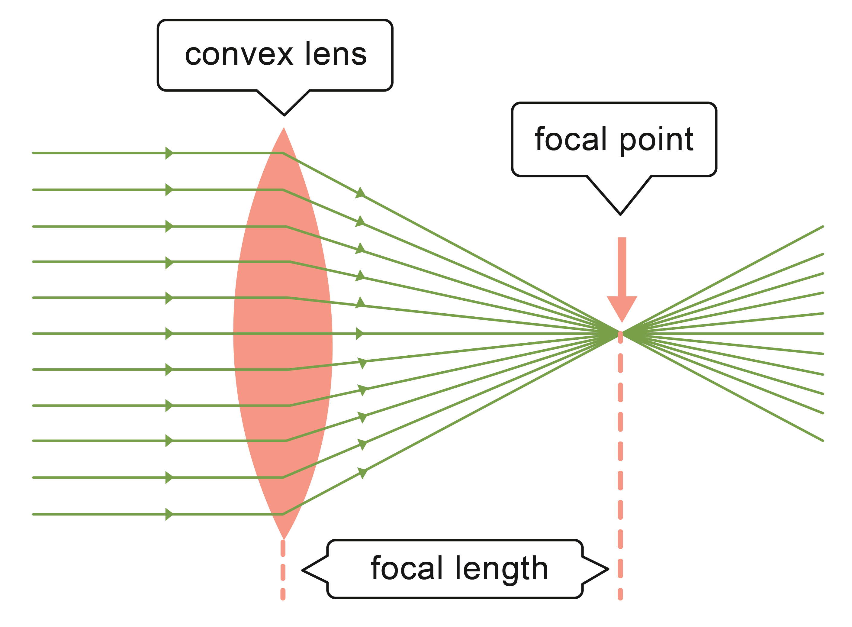 Convex lens refracting