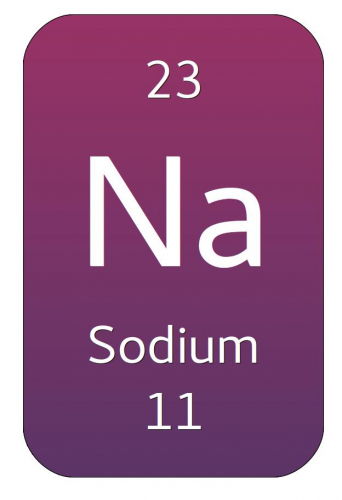 The periodic table box for sodium