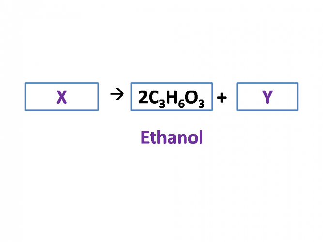 Image of anaerobic respiration equation