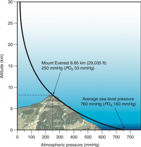 Pressure for Mount Everest