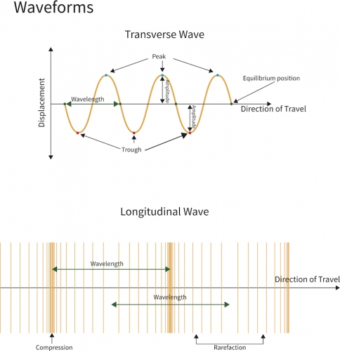 Transverse and longitudinal wavews