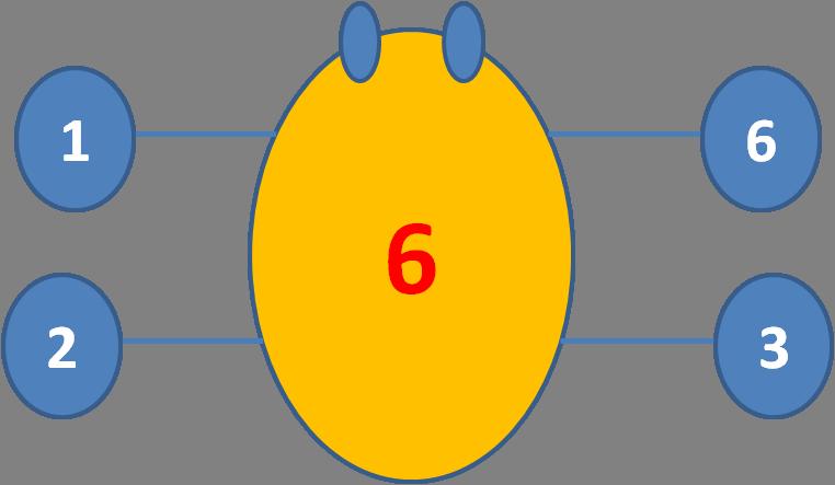 Factor spider 6