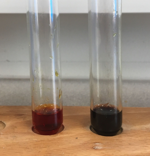 Iodine test for starch