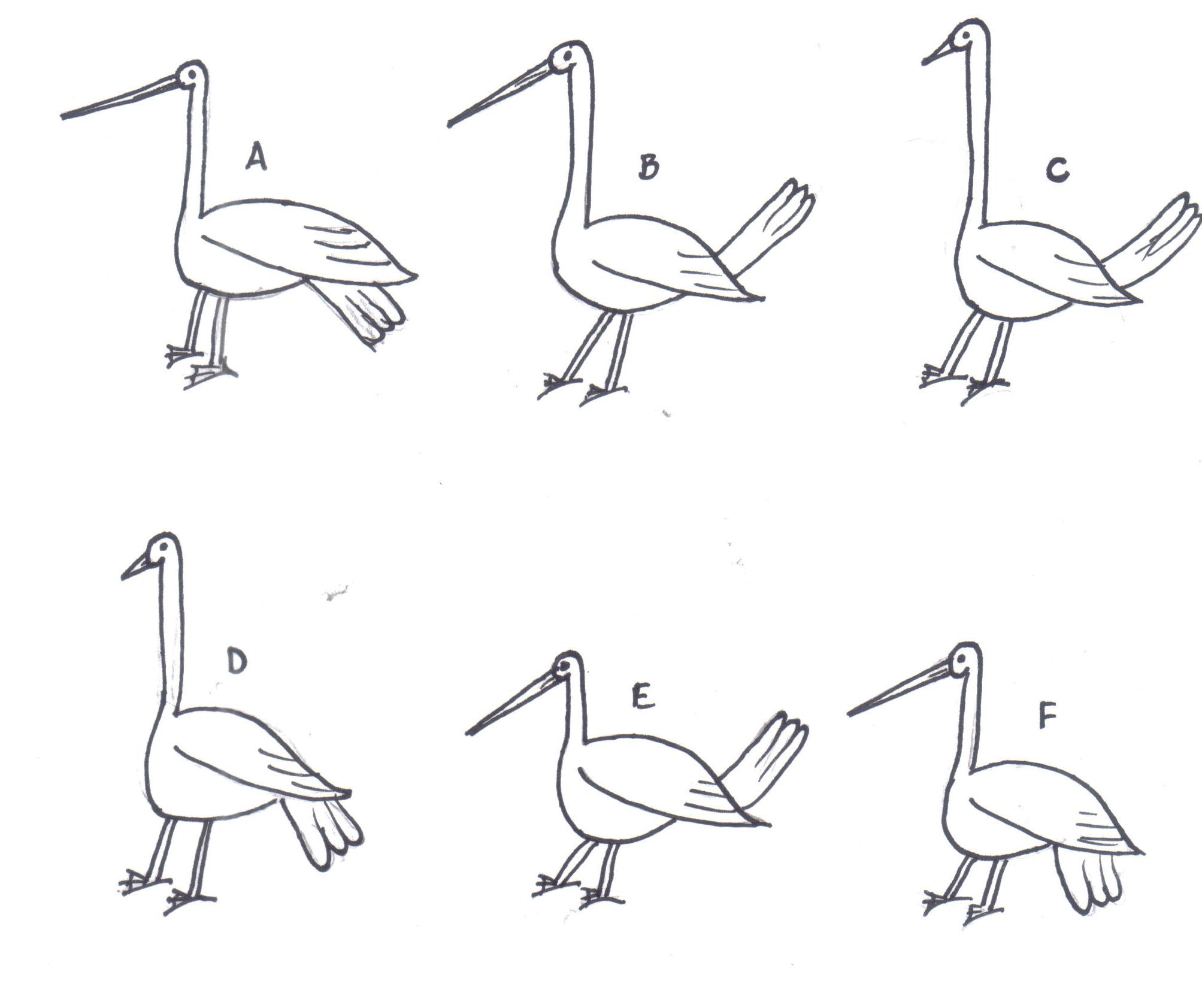 Goose key