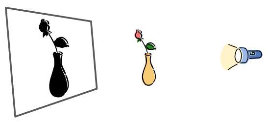 Shadow of vase