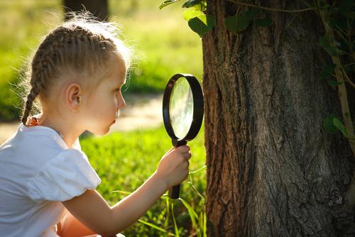 Girl looking at tree bark