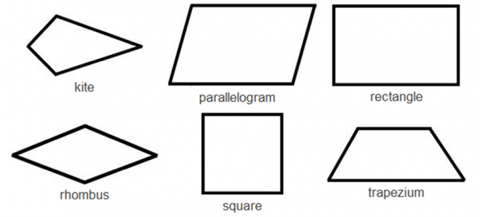 Know Your 2D Shapes Identify Quadrilaterals Worksheet EdPlace – Angles in Quadrilaterals Worksheet