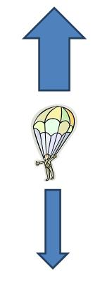 Forces on a parachute