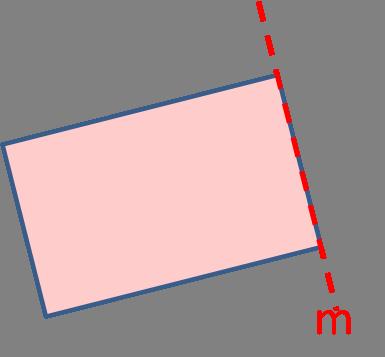 Mirror line
