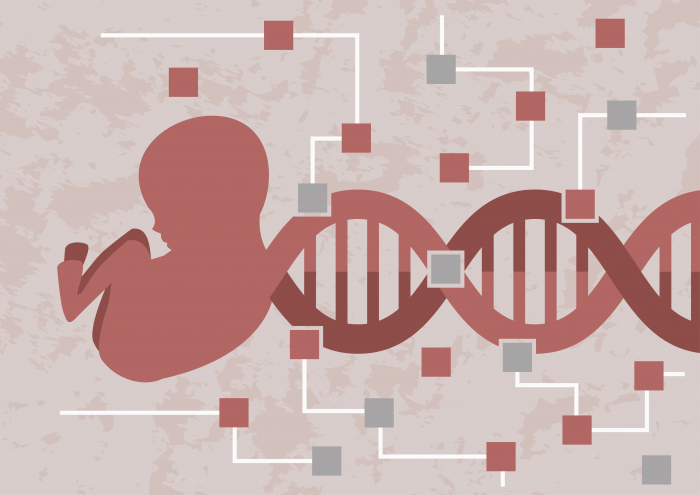 Genetic engineering on embryos