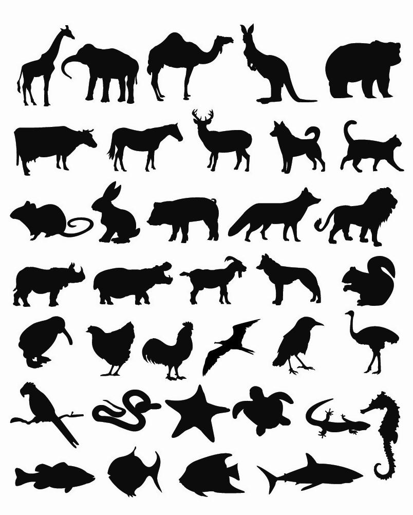silhouette pictures of different animals