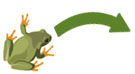 Frog jumping forward