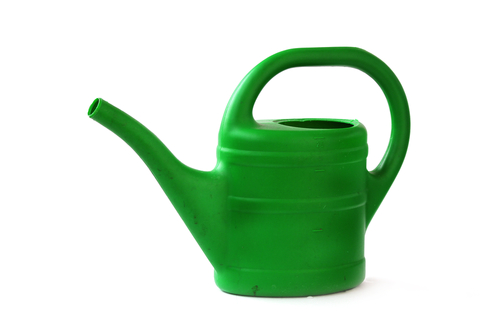 A green watering can